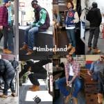 Timberland bocanci