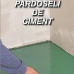 Mr Bricolage Vopsirea unei pardoseli de ciment
