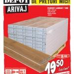 Brico Depot Livrari Masive 5-24 Februarie 2016