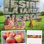 Carrefour Alimentare 19 – 25 Mai 2016