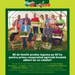 Carrefour Verdeturi Proaspete Martie – Aprilie 2017