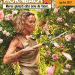 Hornbach Flori & Gratare Aprilie – Mai 2017