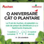 Auchan O Aniversare cat o Plantare 2017