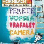 Hornbach Produse Amenajari Interioare Noiembrie 2017