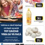 Carrefour Gratar 26 Septembrie – 02 Octombrie 2019